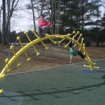 Spiral monkey bars shaped like a DNA Strand.