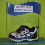 "Small blue sneaker on a book with a blue banner saying "" 2012 Fit and Lit Grade 4 Winner"""
